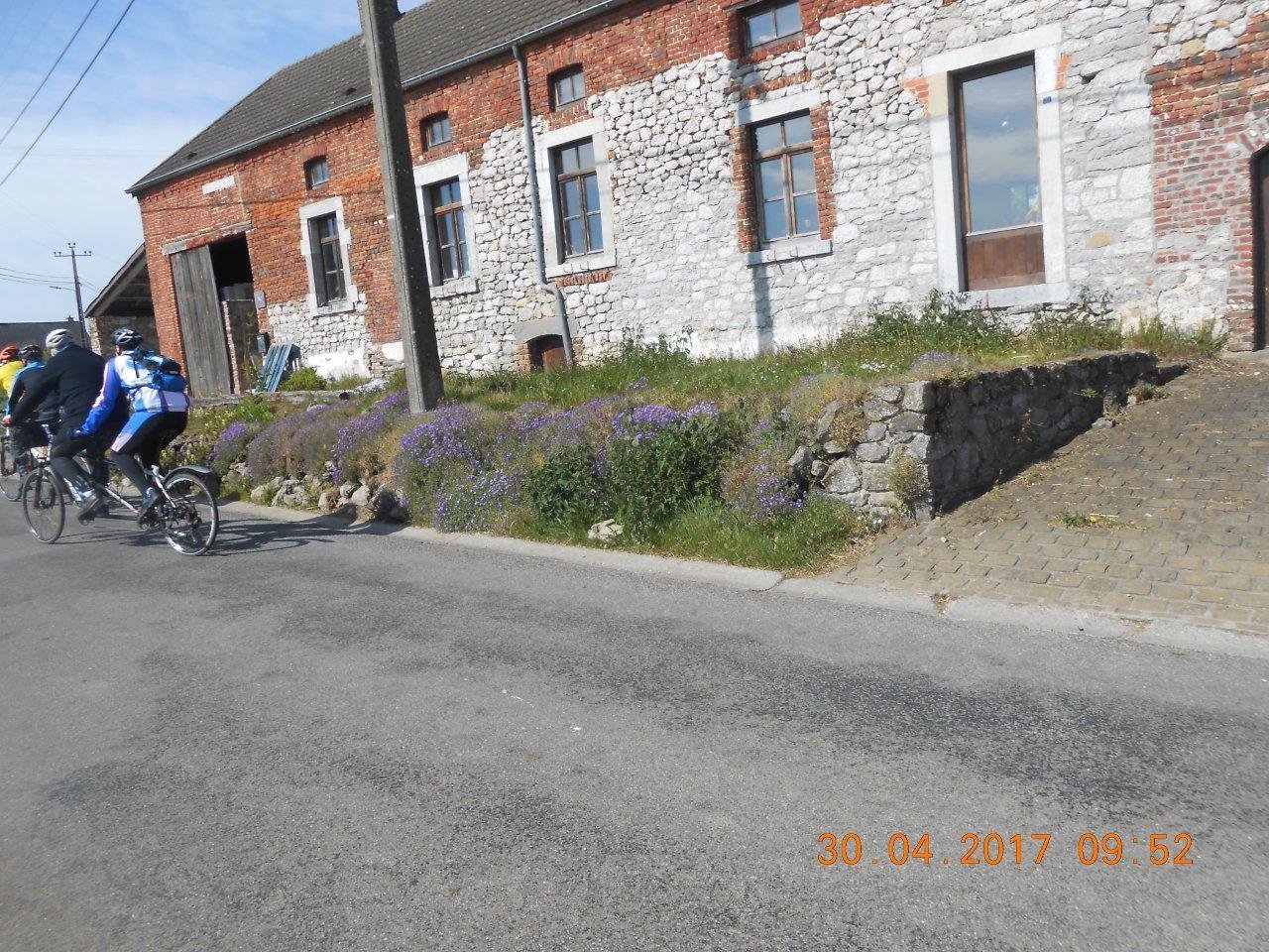Cyclocoeur_2017 (34)